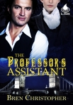 The Professor's Assistant